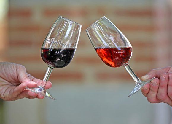 Dégustez nos vins de Gaillac