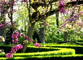 Jardins à la française Touny les Roses