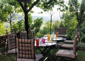 Petit déjeuner en été sous la fraîcheur de la vigne